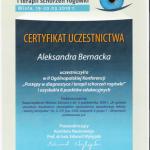 2004 Postępy w diagnostyce i terapii schorzeń rogówki