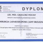 2002 Szkolenie: Chirurgia laparoskopowa jamy brzusznej