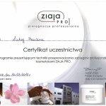 2010 Techniki przeprowadzania zabiegów profesjonalnych kosmetykami ZIAJA PRO