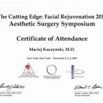 2010 The Cutting Edge: Facial Rejuvenation 2010 Aesthetic Surgery Symposium