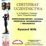 2002 Nowoczesne metody leczenia przepuklin pachwinowych i brzusznych