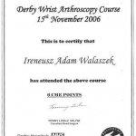2006 Derby Wrist Arthroscopy Course: Ireneusz Walaszek