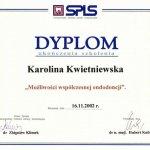2002 Szkolenie: metody współczesnej endodoncji