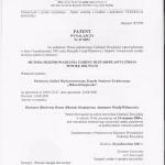 2001 Metoda Przeprowadzania Zabiegu Blefaroplastycznego Powiek Dolnych