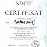 2010 Nanolaboratory Nantes