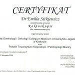 2008 Dr Emilia Sitkiewicz - kurs kolposkopii dla zaawansowanych