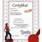 2011 Certyfikat WIBRA LINE