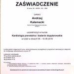 2016 Kardiologia prenatalna - Andrzej Kałamacki