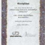 2001 Nowoczesna koncepcja stomatologii estetycznej