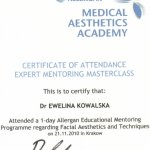 2010 Medical Aesthetics Academy