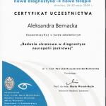 2009 Badania obrazowe w diagnostyce neuropatii jaskrowej
