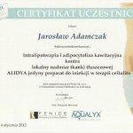2012 Intralipoterapia i adipocytoliza kawitacyjna