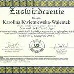 2006 Kurs: Licówki porcelanowe