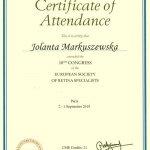 2010 European Society of Retina Specialists