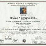 2003 Certyfikat uczestnictwa w Światowym Kongresie Endoskopii Ginekologicznej