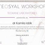 2013 Kamila Idzik - szkolenie Teosyal, Redensity