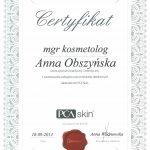 2013 Anna Obszyńska - PCA Skin