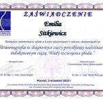 2010 Dr Emilia Sitkiewicz - kurs szkoleniowy z zakresu ultrasonografii