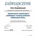 2008 Zastosowanie mezoterapii w profilaktyce i korekcji defektów estetycznych skóry