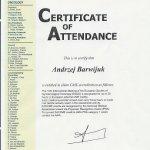 2003 Certyfikat uczestnictwa