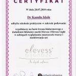 2010 Kamila Idzik - Elevess