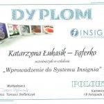 2010 Wprowadzenie do systemu Insignia