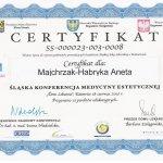 2010 Dr Aneta Majchrzak-Habryka - Konferencja medycyny estetycznej