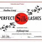 2009 Perfect Silk Lashes - stylizacja rzęs