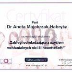 2012 Dr Aneta Majchrzak-Habryka - SilhouetteSoft