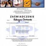 2008 Kurs medyczny Algorytm leczenia kanałowego
