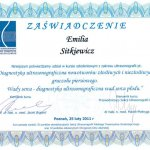 2011 Dr Emilia Sitkiewicz - kurs szkoleniowy z zakresu ultrasonografii