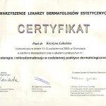 2003 Szkolenie praktyczne: mezoterapia i mikrodermabrazja