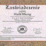 2007 Ukończenie kursu pt.: Wkłady, nakłady, mosty