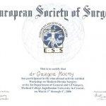 2006 European Society of Surgery
