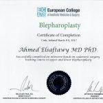 2017 Blepharoplasty