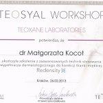 2013 Dr Małgorzata Kocot - Teosyal Workshop, Redensity