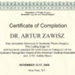 2008 Advances in Aesthetic Plastic Surgery The Cutting Edge VII New York