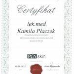 2013 Kamila Idzik - PCA Skin