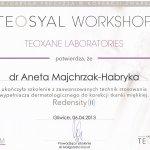 2013 Dr Aneta Majchrzak-Habryka - Teosyal Workshop